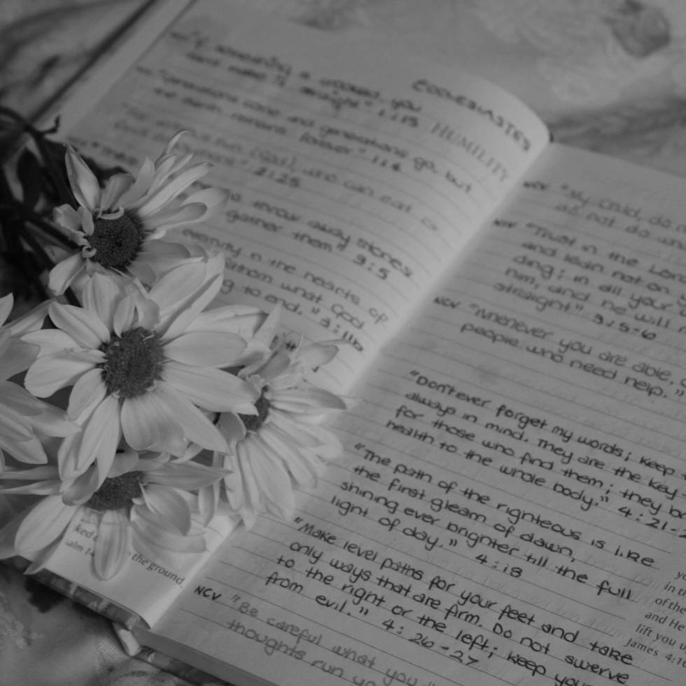 Inspiration, Quotes, Book, Notes, Bible, Scripture, Christian, Faith, Flowers, Black and White, Photography
