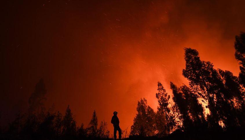 contoh teks berita kebakaran