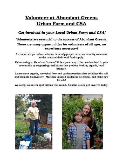 Volunteer Info Page For Website-1 jpg