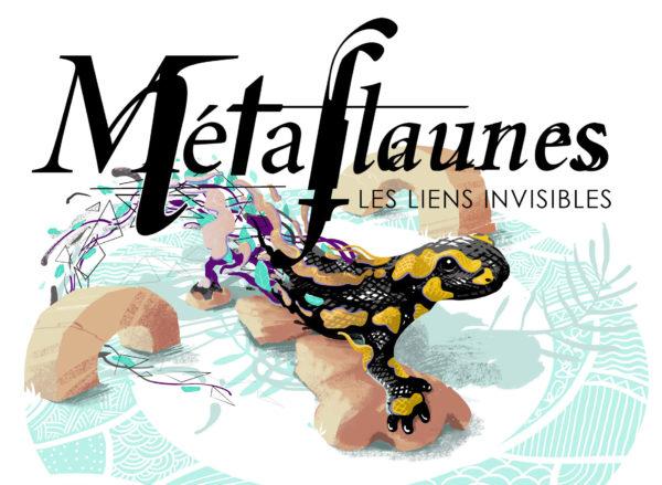 Métaflaunes illustrations – expo sofffa lyon