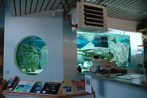 vue d'ensemble de l'aquarium de 6000 litres