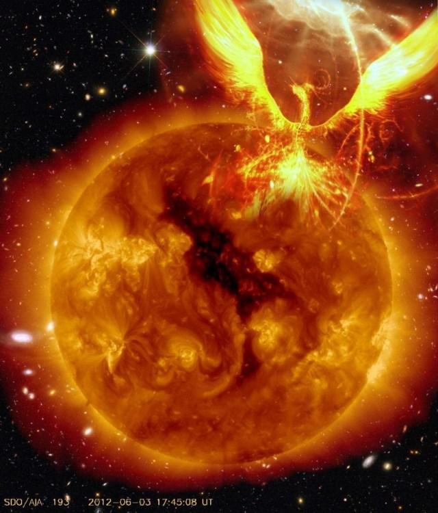 Phoenix in the Sun