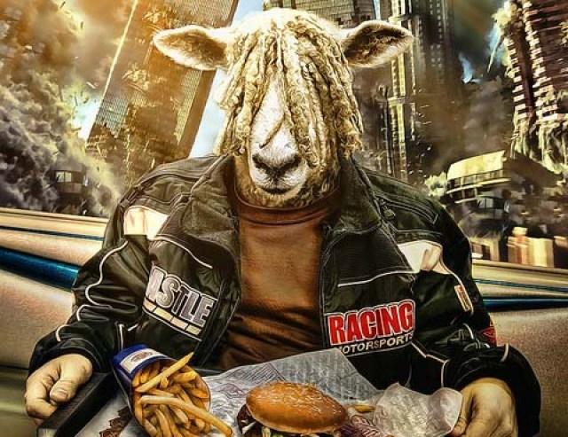 sheeple man