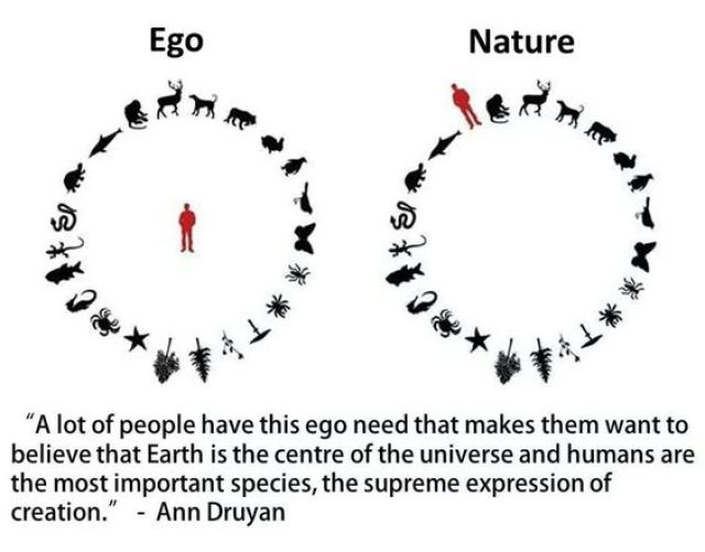 EGO vs NATURE 2