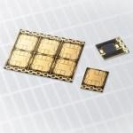 zlatý čip