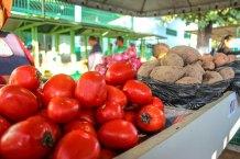 feira de basileia (3)