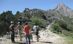 Vacaciones en Andalucía senderismo Parque natural Sierra de Grazalema