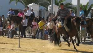 Feria cultural event in Prado del Rey, Andalusia
