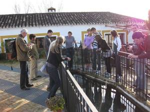 Cultural visit to a traditional grain mill in El Bosque in the Sierra de Grazalema natural park