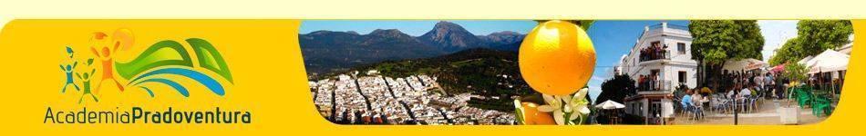 cabecera de la web de Academia Pradoventura en 2010