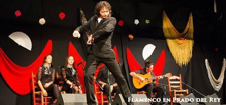 Flamenco-show-Prado-del-Rey