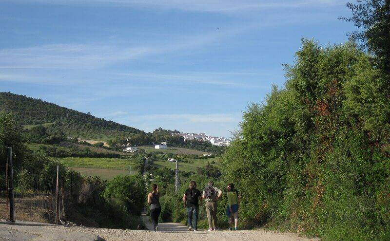 Hiking in Andalucia Route around Prado del Rey with students of spanish