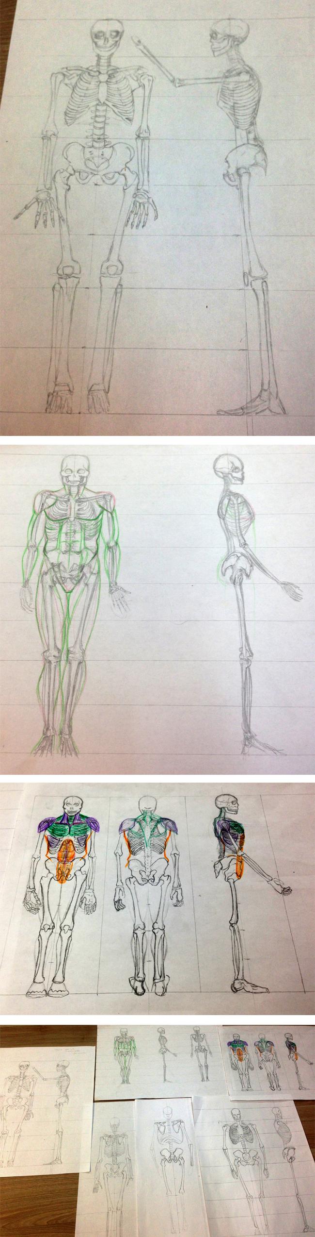 nuevos_ejercicios_alumnos_curso_dibujo_profesional_diseno_esqueleto_anatomia_academiac10_madrid