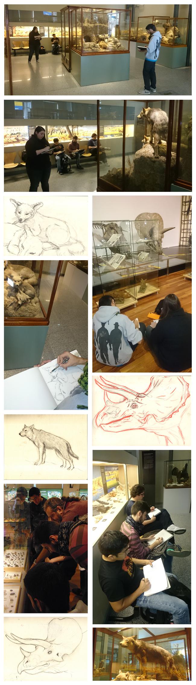 Visita Museo 2