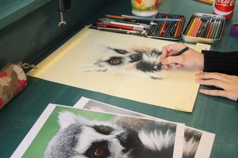 curso-ilustracion-lapices-colores-masterc10-1
