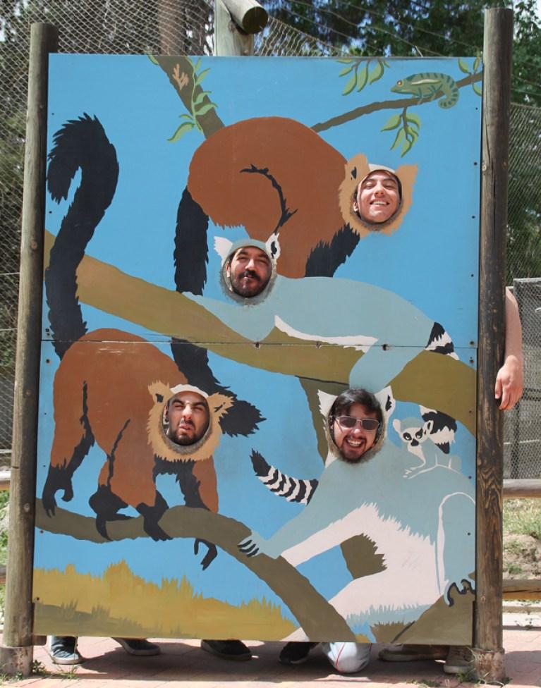curso-master10-dibujo-ilustracion-animales-excursiones-visita-zoo-madrid6