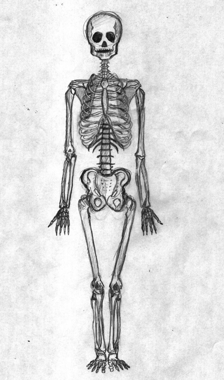 curso-dibujo-comic-aprender-anatomia-artistica-humana-dibujantes-madrid