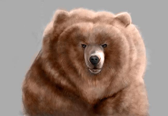 curso-arte-digital-photoshop-pelaje-pinceles-oso-final-clase