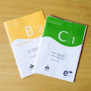 DELE Exam Preparation Course