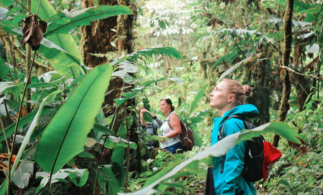 Visiting Locos por el Bosque Private Reserve