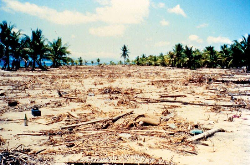 kliping bencana alam Tsunami NTT 1992 Indonesia