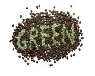 jual-green-coffee