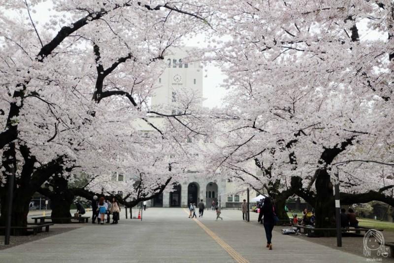 Universitas terbaik di Jepang Tokyo Institute of Technology (Tokodai)