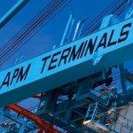 apm-terminals-scholarship