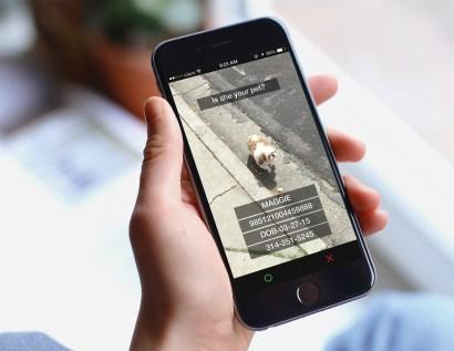 phone-1.jpg?fit=2000%2C1545