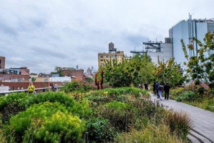 Le High Line est un parc linéaire suspendu entre les rues de New York. - Gracieuseté
