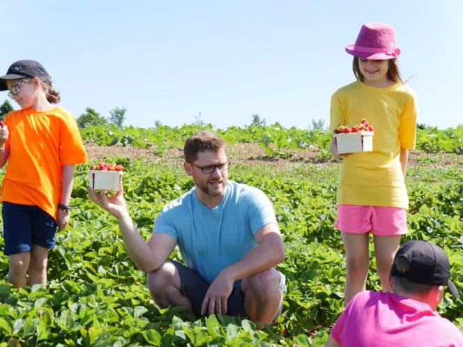 Une scène de la série Agrofun tournée sur une ferme de petits fruits à Memramcook. - Gracieuseté: Mozus productions.