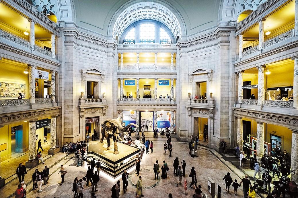 Dix-neuf musées appartiennent à l'Institution Smithsonian. Ici le Musée national d'histoire naturelle. − Gracieuseté