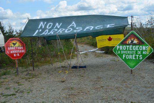 L'an dernier, des citoyens ont occupé une terre de la Couronne située dans le secteur de White's Brook au Restigouche afin de protester contre l'épandage d'herbicide. - Acadie Nouvelle: Jean-François Boisvert