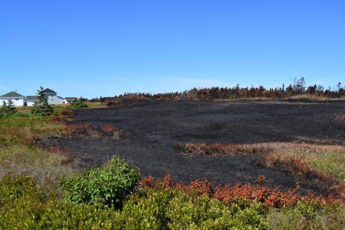 Sans l'intervention des secours des maisons du chemin Wilson, à Miscou, auraient été ravagées par les flammes. Le feu a dangereusement menacé certaines habitations. - Acadie Nouvelle: Vincent Pichard