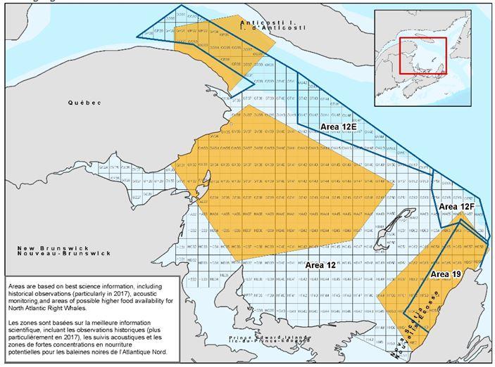 Les zones de forte concentration en nourriture potentielle pour les baleines noires de l'Atlantique Nord. - Image gracieuseté: MPO