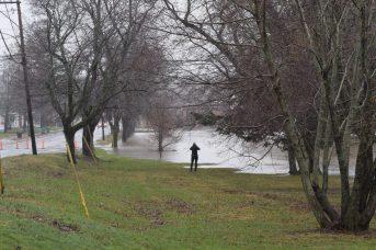 Les inondations continuent d'attirer les curieux à Fredericton. - Acadie Nouvelle: Mathieu Roy-Comeau