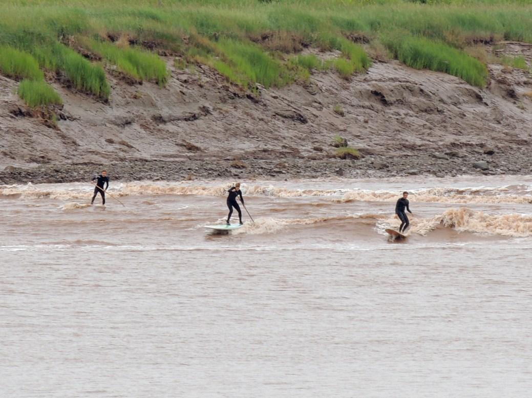 Le mascaret a attiré des surfeurs sur la Petitcodiac en juillet 2013. - Archives