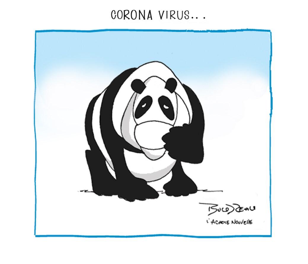 Caricature, 28 janvier 2020