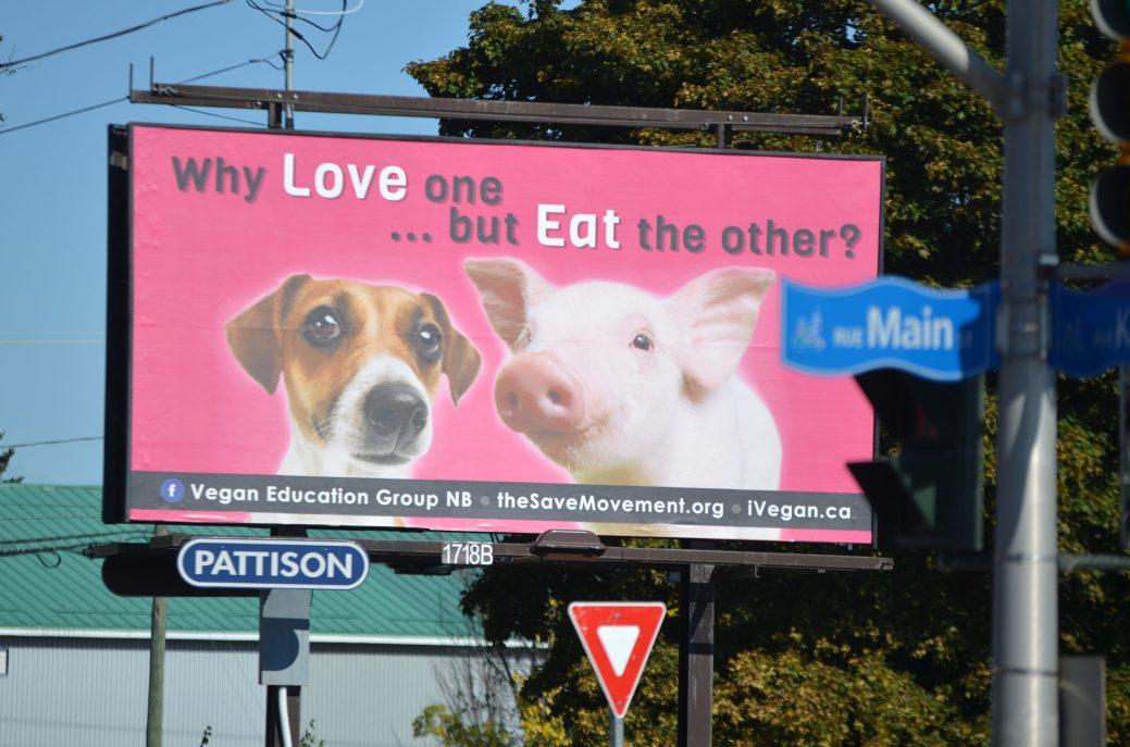 «Pourquoi aimer l'un...mais manger l'autre?», cette affiche pro-végane a été installée au centre-ville de Moncton en octobre 2018. Le groupe voulait ouvrir la discussion au sujet du spécisme, l'idéologie qui postule une hiérarchie entre les espèces. - Archives