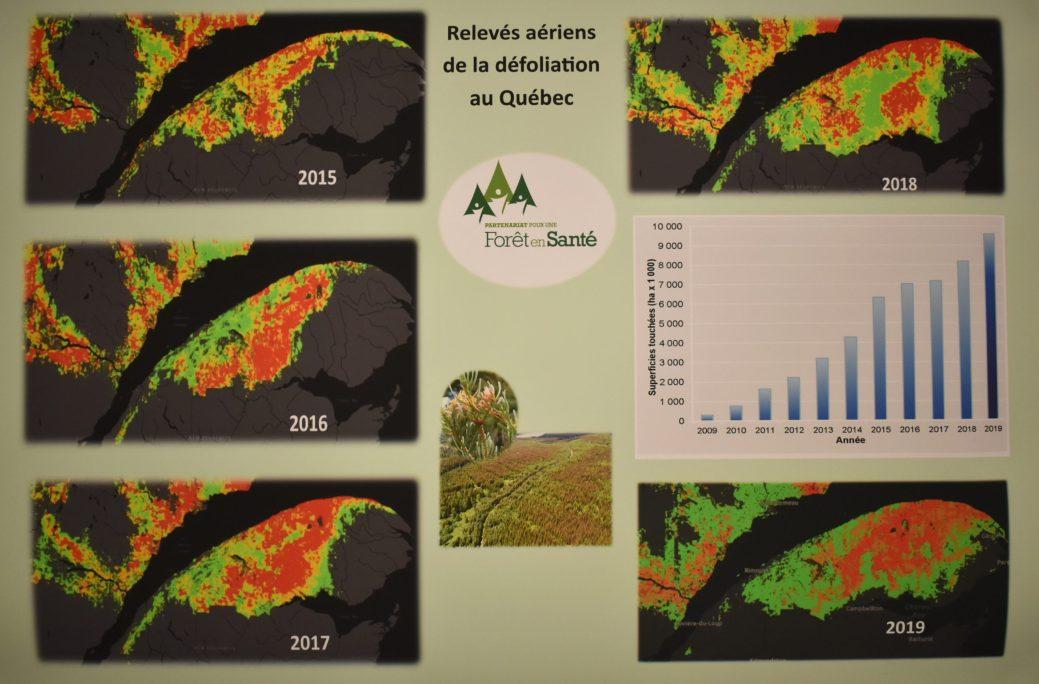 Sur cette carte, on peut voir la progressions du territoire affecté par la tordeuse depuis 2015 dans l'est du Québec. - Acadie Nouvelle: Jean-François Boisvert