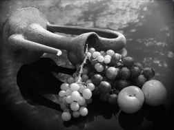 La perla de la uva - Irene López Sanz