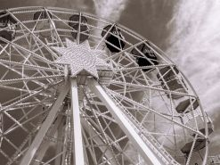 La rueda de la vida