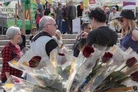 Sant Jordi ACAF (7)