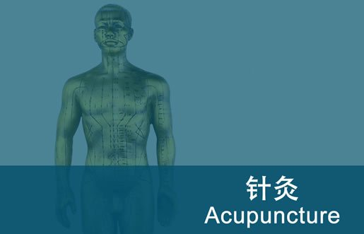acupuncture diploma