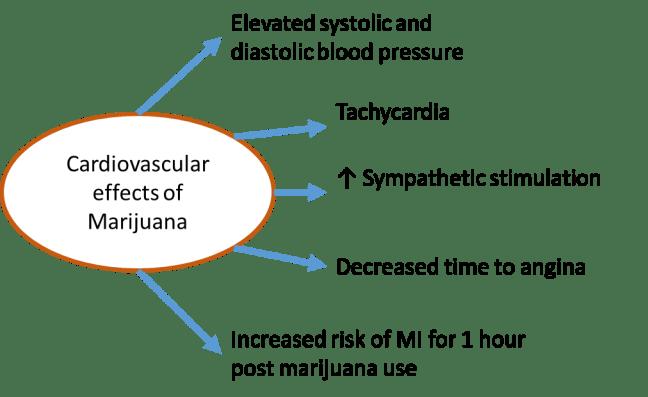 Marijuana and Coronary Heart Disease - American College of Cardiology