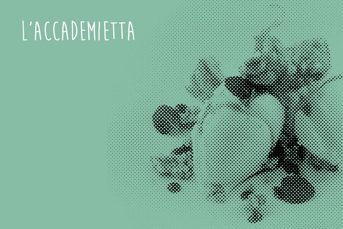 L'Accademietta, i dolci e i gelati