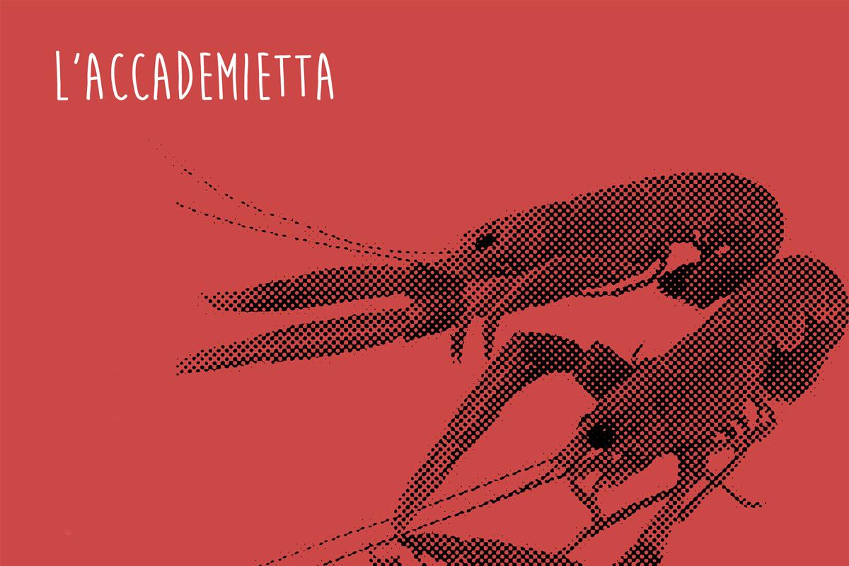 L'Accademietta, i gamberi e gli scampi