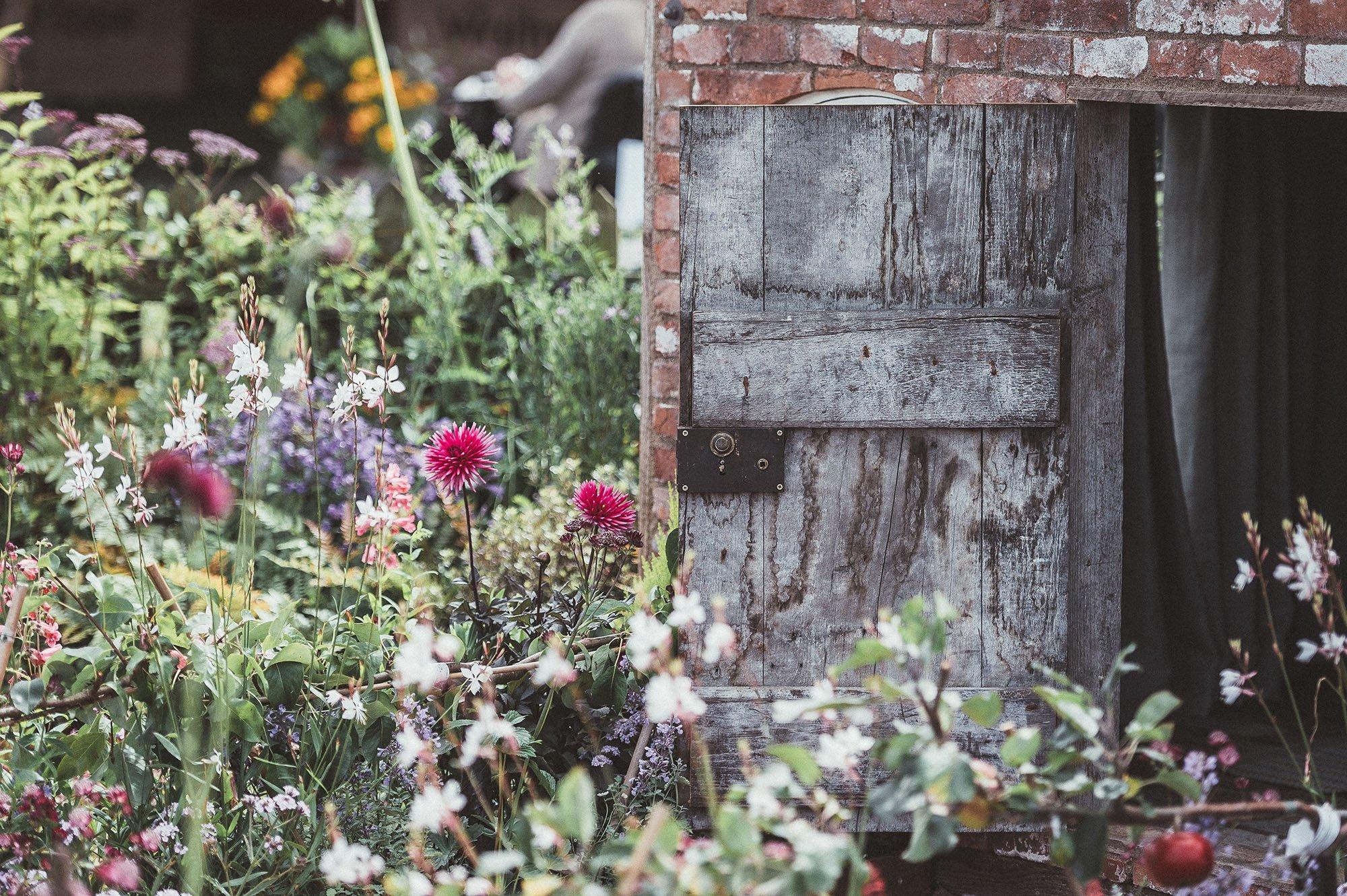 piante e felicità