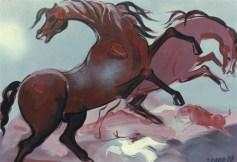 Cavalli - olio su tela 50x70