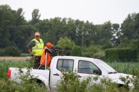 Battue administrative du 12 juillet 2014 - Plaine de Rochemaure